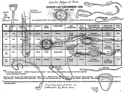 artwork that is a chart of sperm donor histories with drawings of sperm and collection devices superimposed